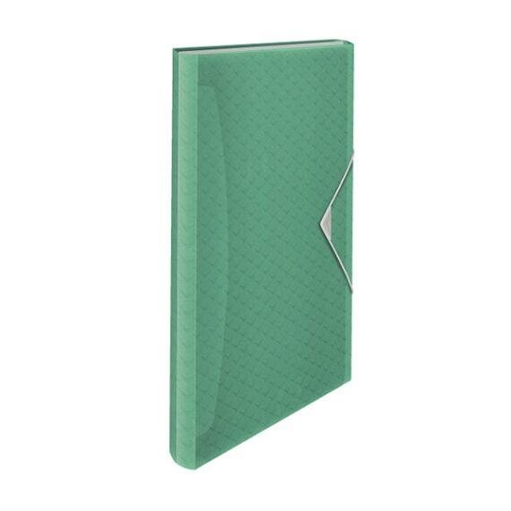 Harmónika mappa ESSELTE Colour`Ice A/4 PP 6 rekeszes zöld